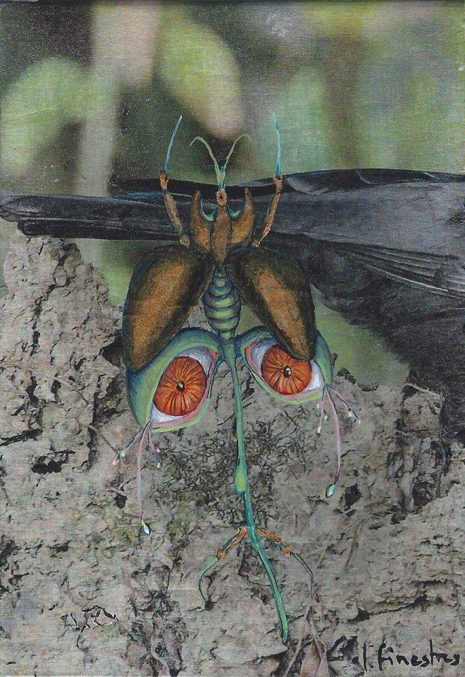 Flor Escarabajo